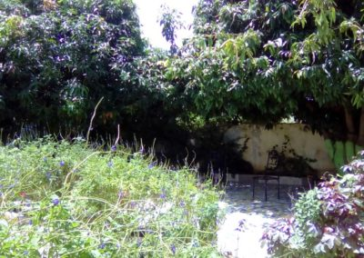 LO-KOUNDA-21-AGOSTO-2017---i-giardini-interni