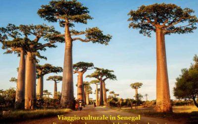 Viaggio culturale in Senegal con stage di musica e danza